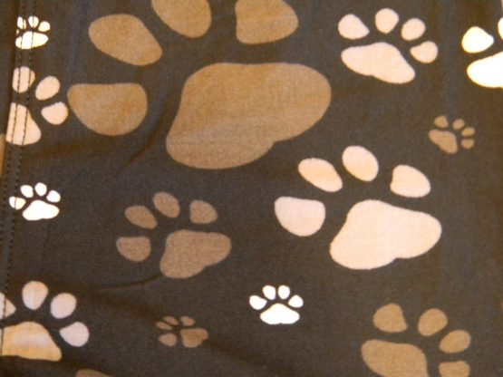 muddy paws paw print close up