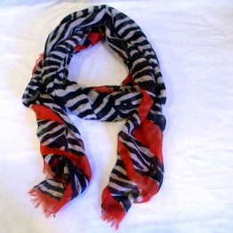 Zebra Print and Red Scarf